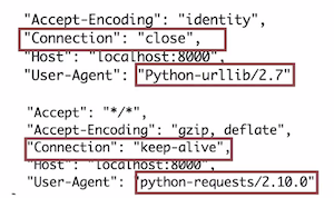 Top Five Python Requests Decode Gzip - Circus